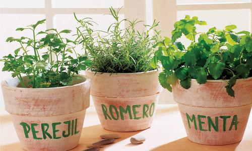 C mo perfumar la casa sin gastar dinero comprar barato - Como mantener la casa limpia y perfumada ...